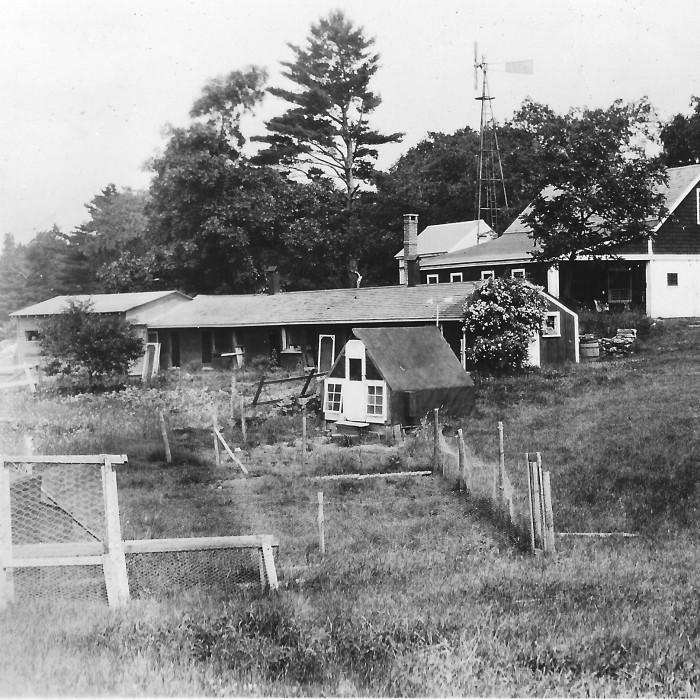 Robert B. Parkhurst's chicken enterprise