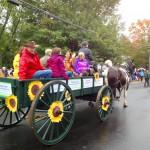 ifarm Parade Wagon