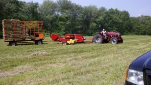 hay making in a Boxford field with the tractor
