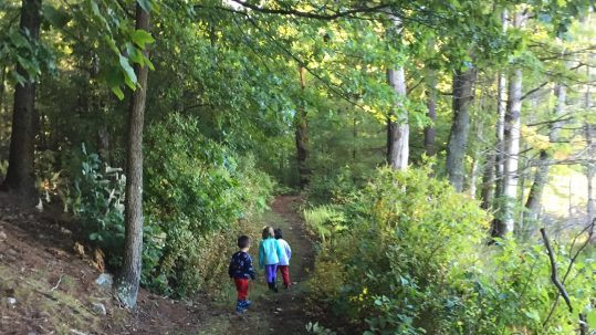 Fall Fun and Fairy Houses Farm Based Education: Boys exploring the woods together