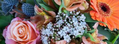flowers-3149495_960_720