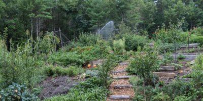garden-very-wide