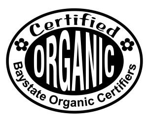 BOC-High-Resolution-Logo-300x250